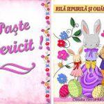 Rila Iepurila si Ouale Vesele – Claudia Groza Lazar